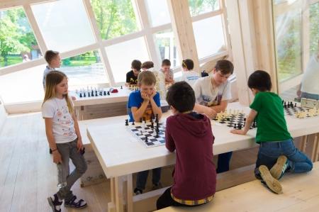 Шахматы для дошкольников
